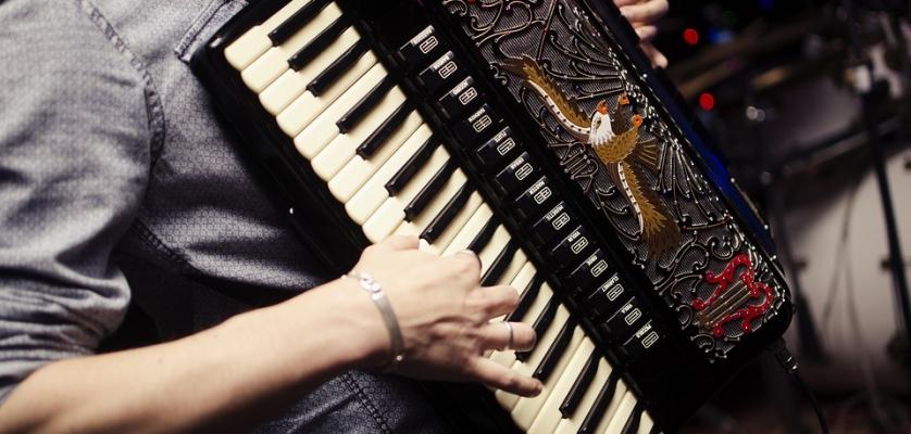 """Studierea individuală a acordeonului """"Succes"""""""