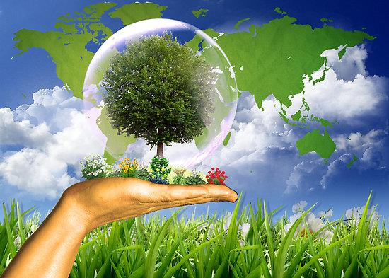 (Română) Micii ecologiști