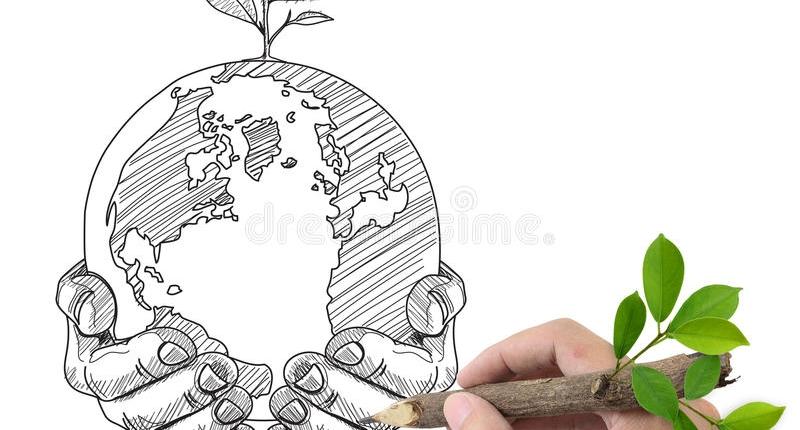 proiecte ecologice